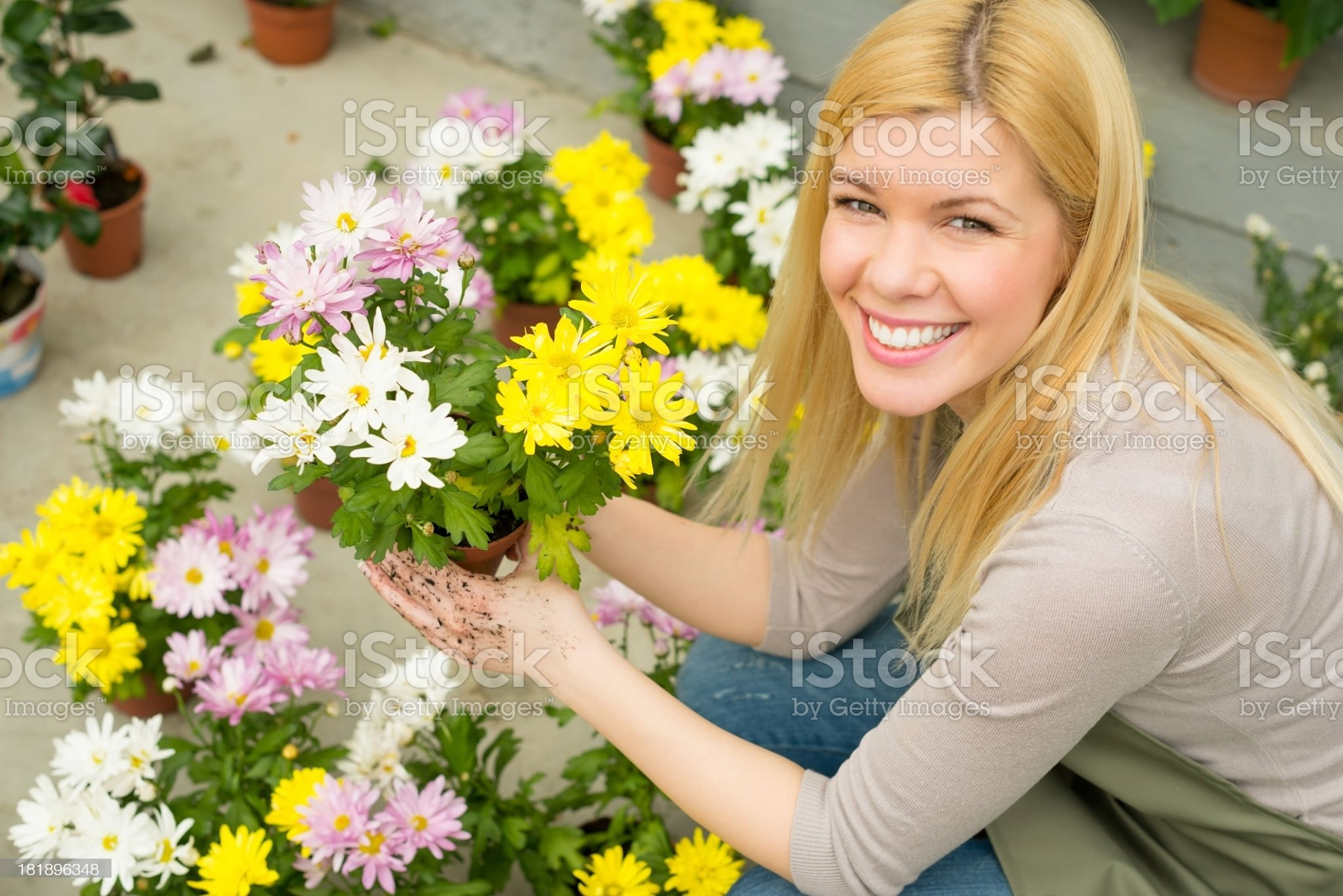 Young female florist royalty-free stock photo
