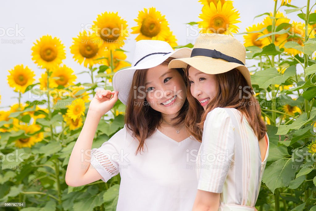 Young female friends in sunflower field stock photo