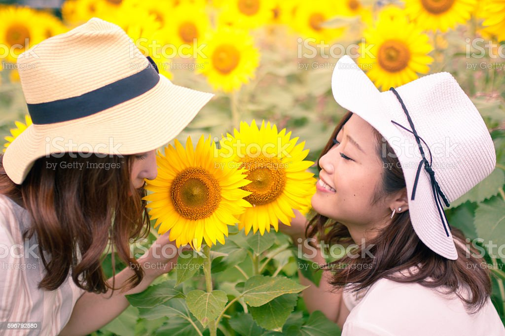 Young female friends smelling sunflower stock photo