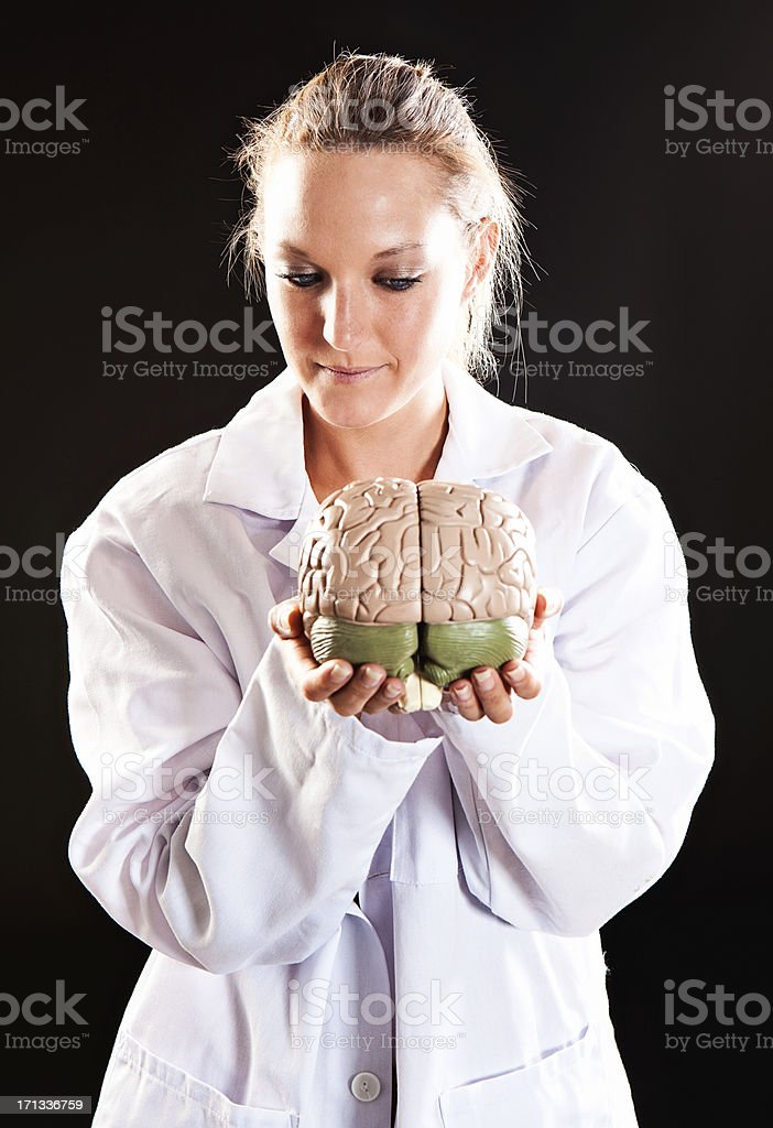 Young female medical professional eyes model brain she is holding stock photo