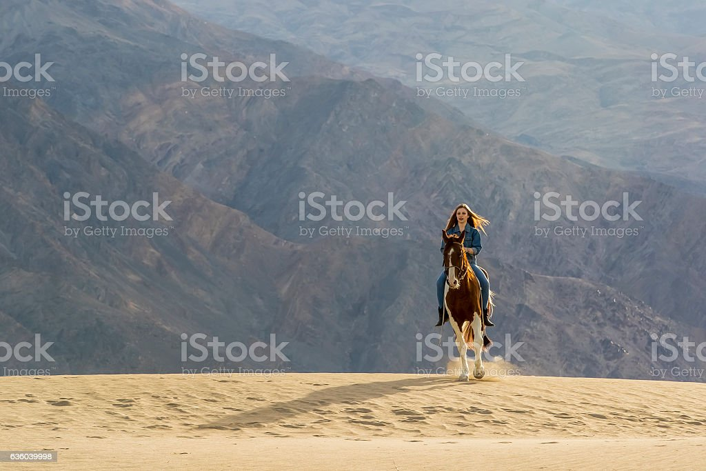 Young Female Rider And Her Horse stock photo