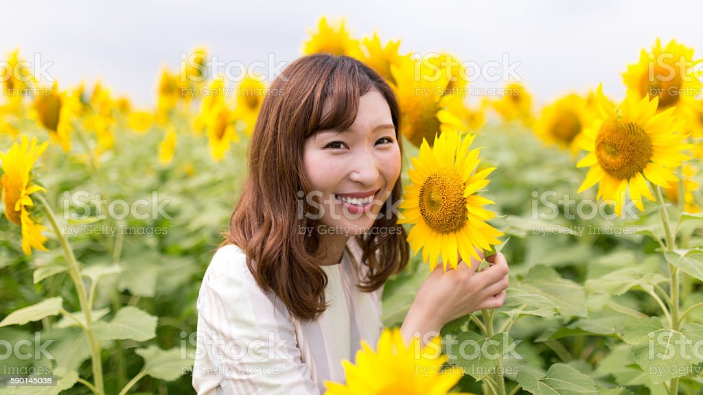 Young female smiling in sunflower field stock photo