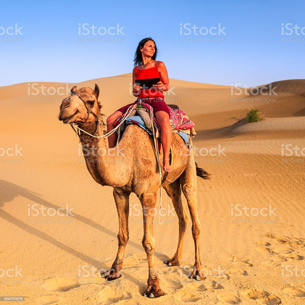 Young female tourist using digital tablet on a camel stock photo