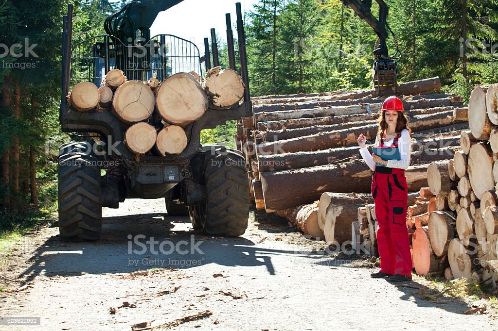 Young forest engineer writing to notepad stock photo