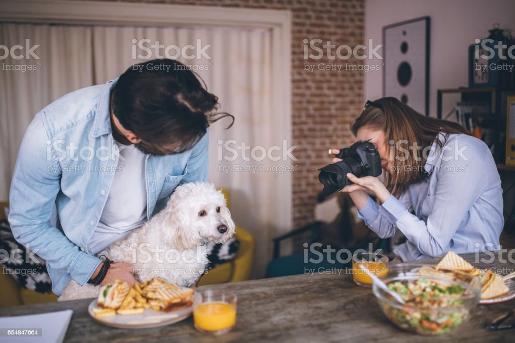 Young freelancers working and play with dog stock photo