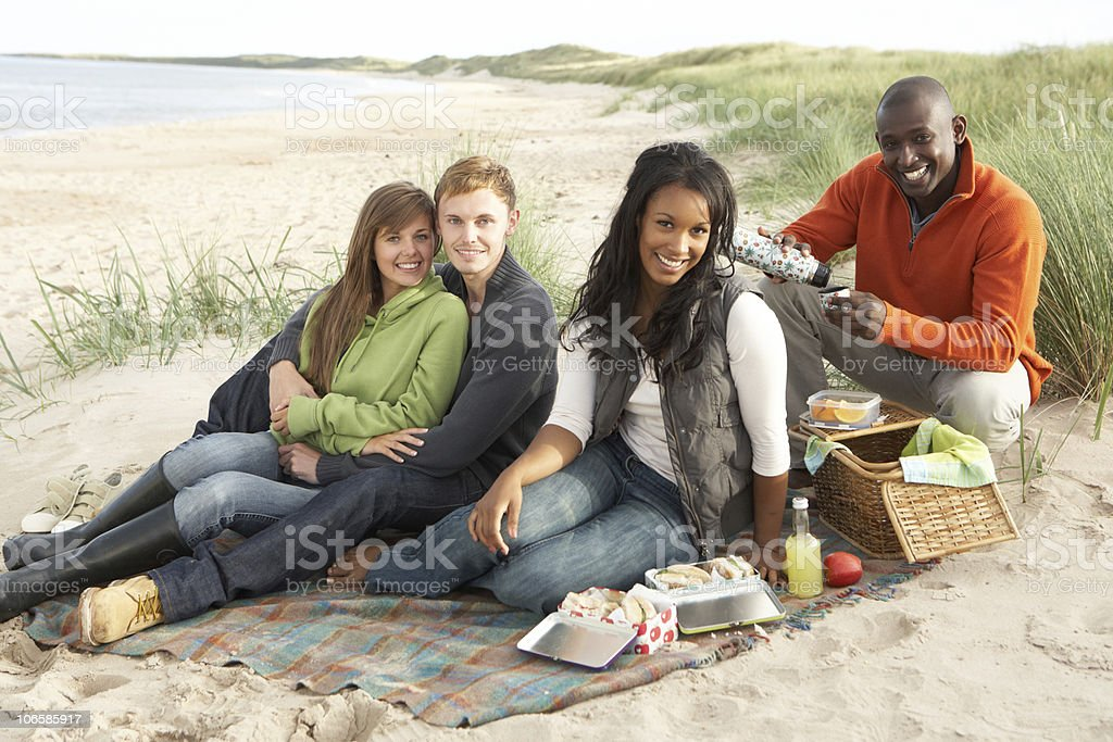 Young Friends Enjoying Picnic On Beach Together royalty-free stock photo