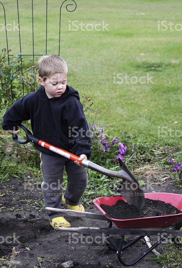 Young Gardener royalty-free stock photo