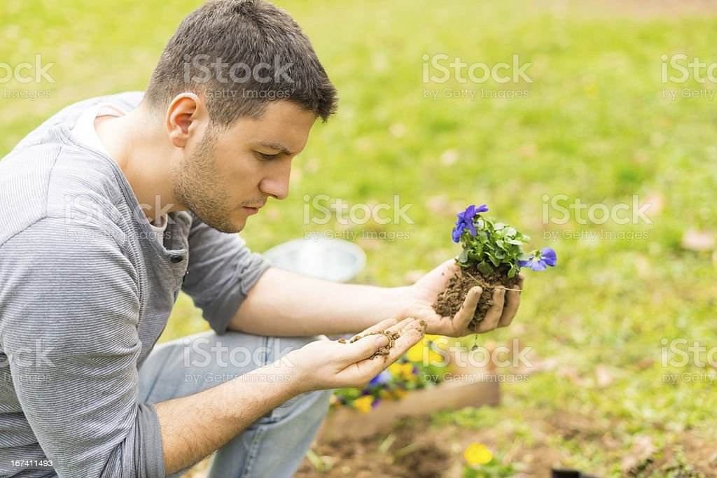 Young gardener planting flowers royalty-free stock photo