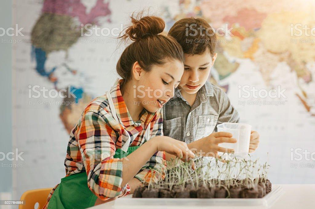 Young gardeners stock photo
