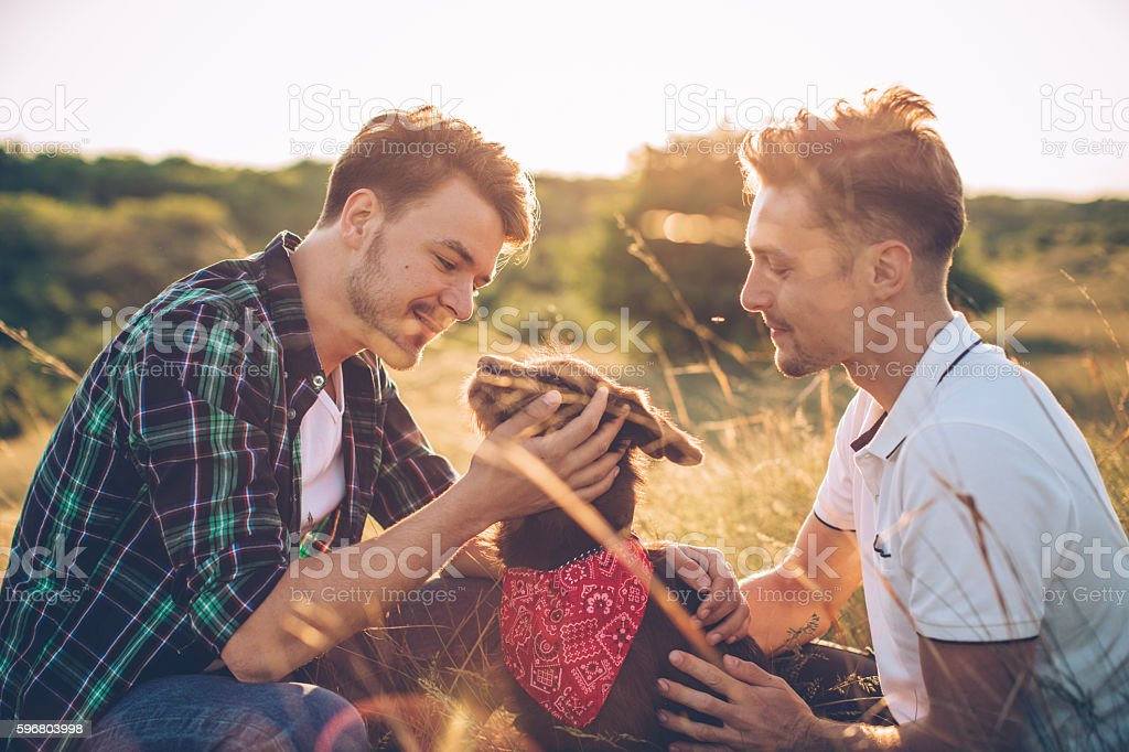 Young gay couple in a meadow. stock photo