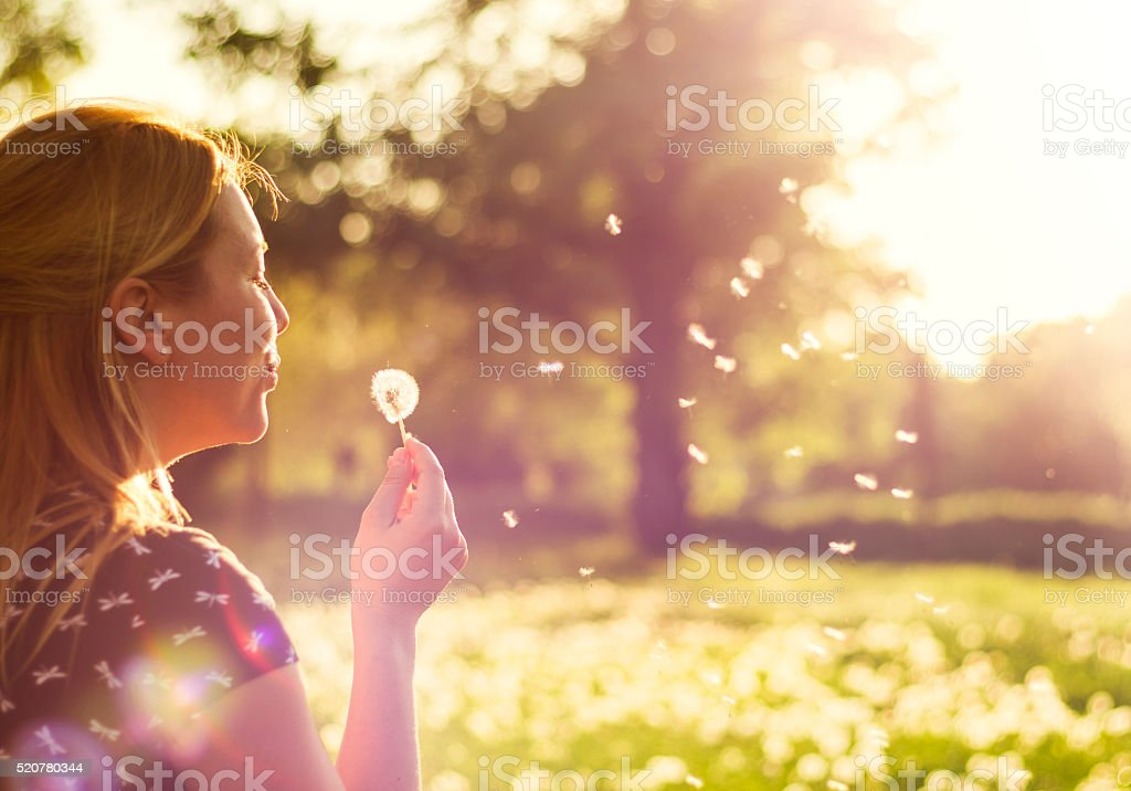 Young girl blowing away dandelion flower in nature stock photo