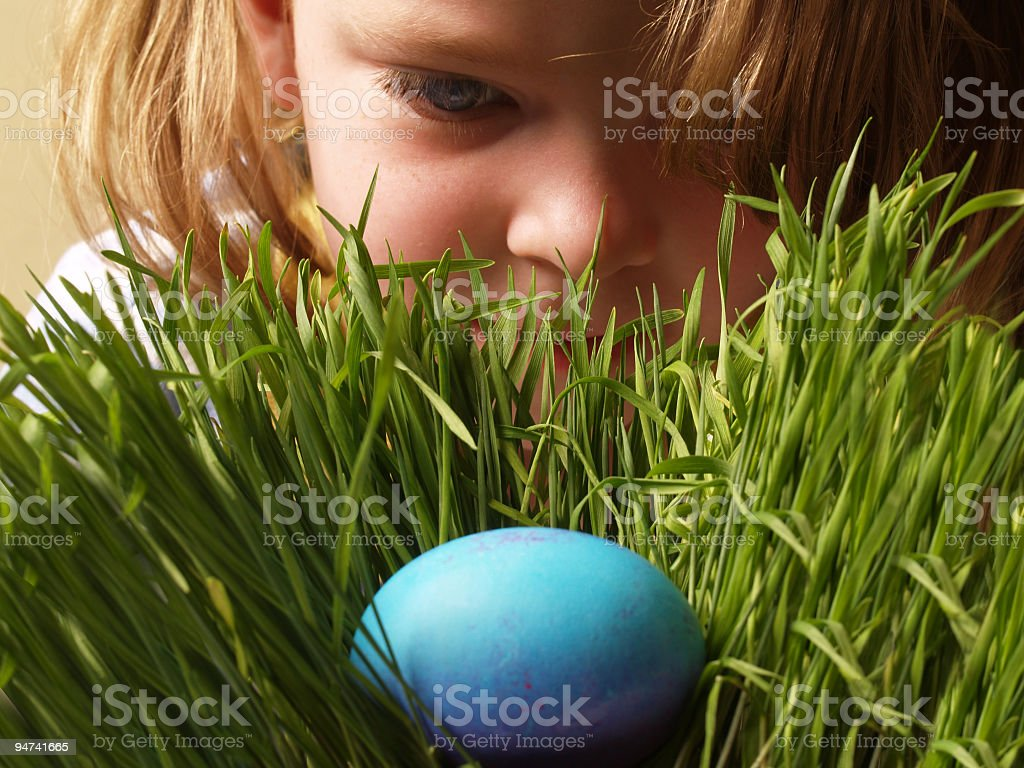 Young girl finds a blue egg in green grass  stock photo