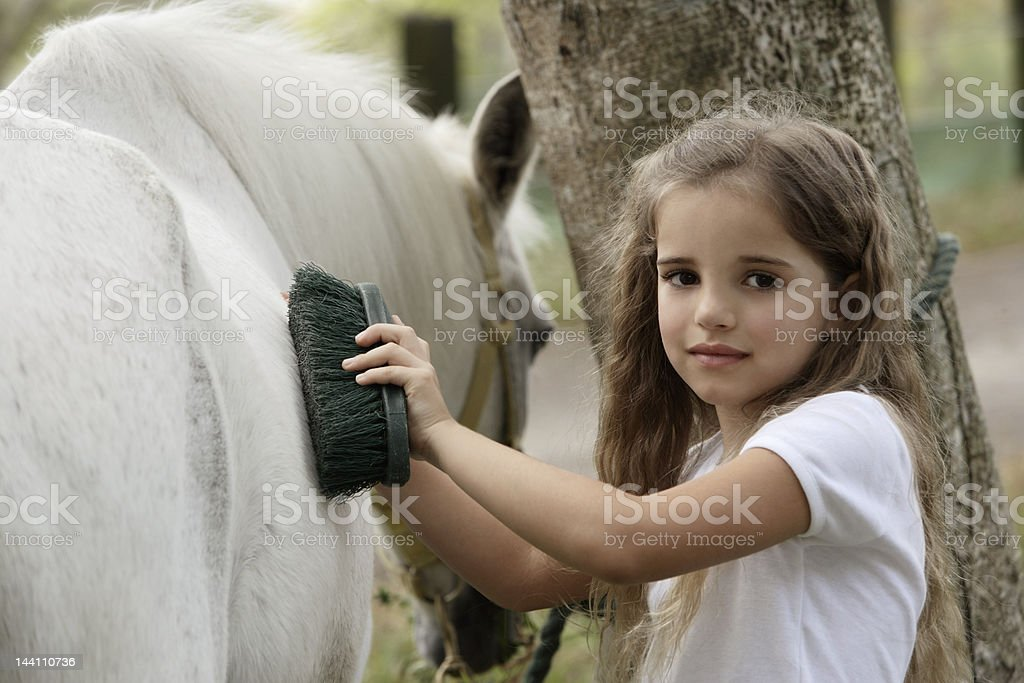 young girl grooming horse royalty-free stock photo