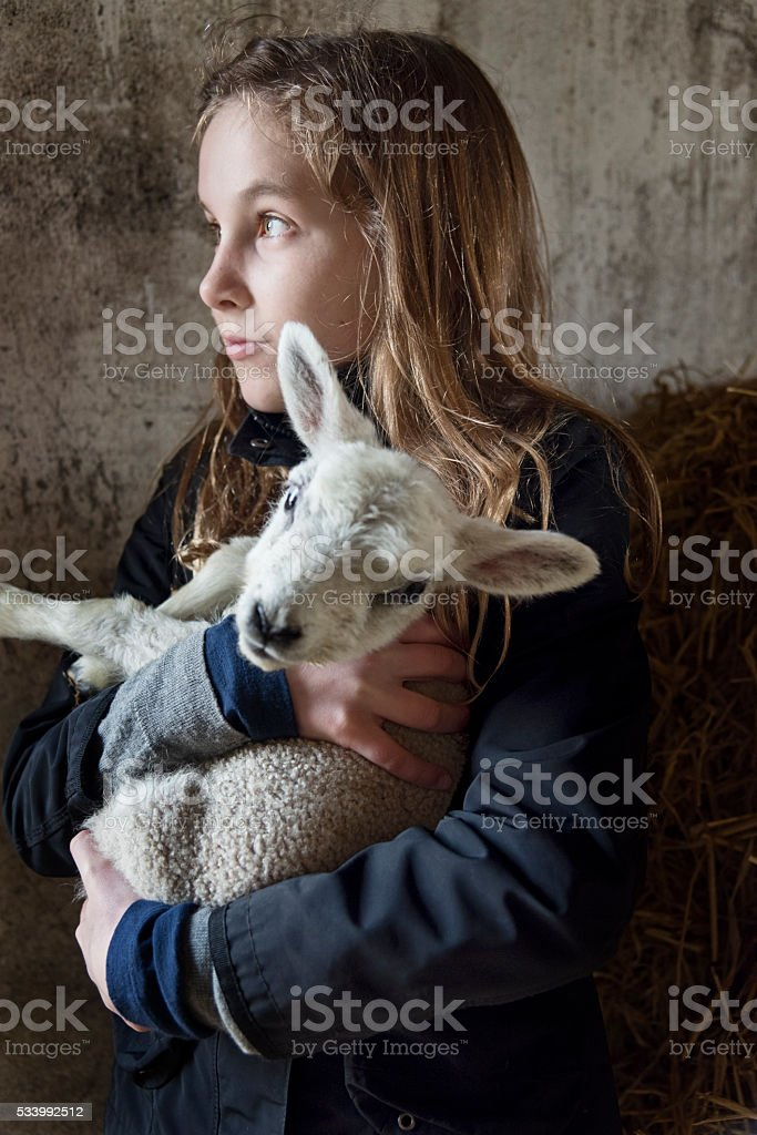 Young Girl Holding a 4 Day Old Lamb stock photo