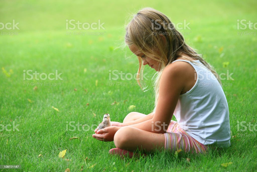 Young Girl Holding a Baby Chick royalty-free stock photo