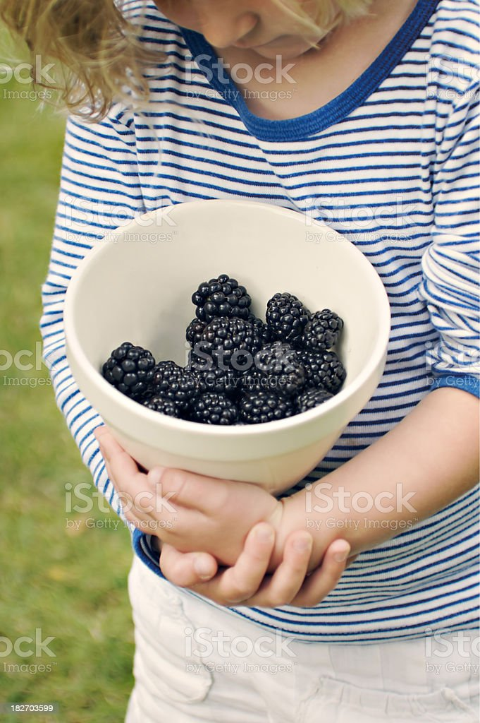 Young Girl Holding Bowl Of Freshly Picked Fruit royalty-free stock photo