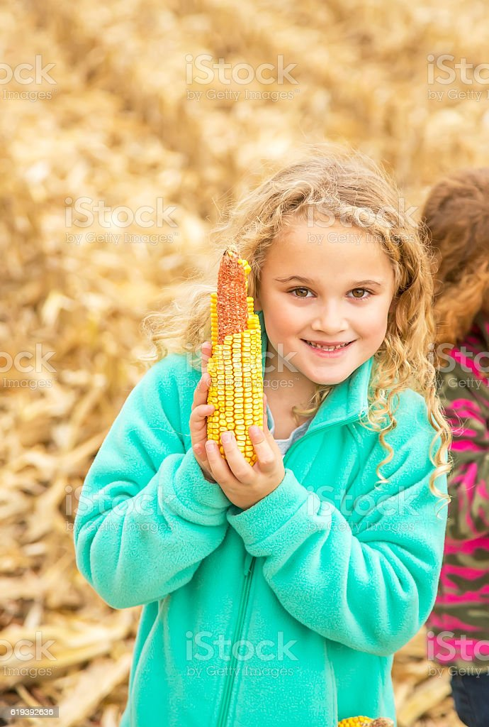 Young Girl Holding Ear of Corn in Autumn Field stock photo