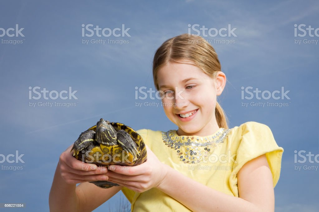 Young Girl Holding Turtle stock photo
