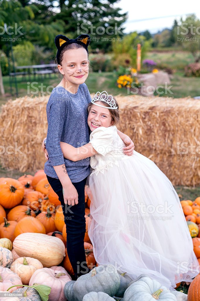 Young girl hugging her sister in the middle of pumpkins stock photo