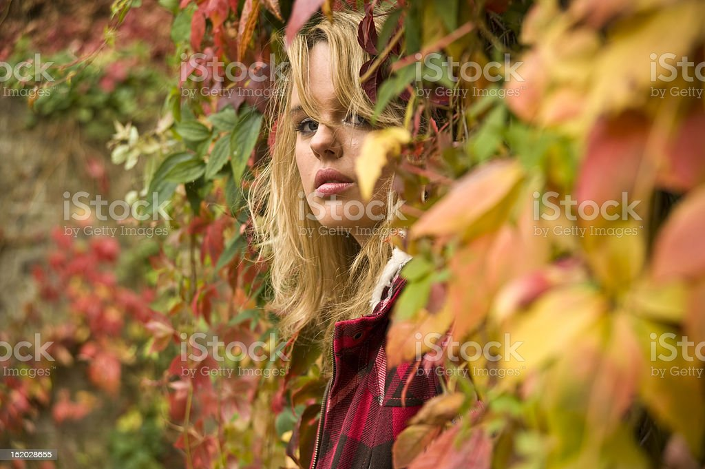 young girl in autumn leafs royalty-free stock photo