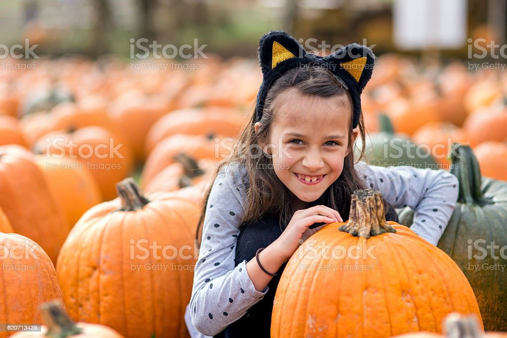 Young girl in cat costume in a pumpkin patch stock photo