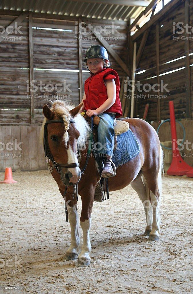 Young girl on pony stock photo