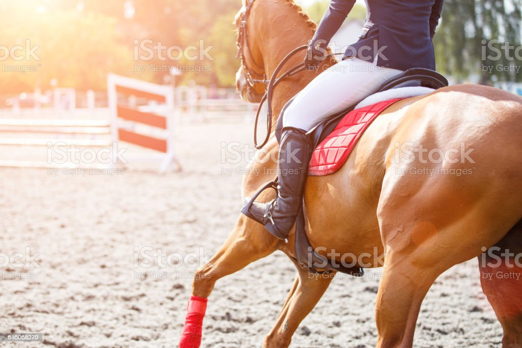 Young girl on sorrel horse galloping on her course stock photo