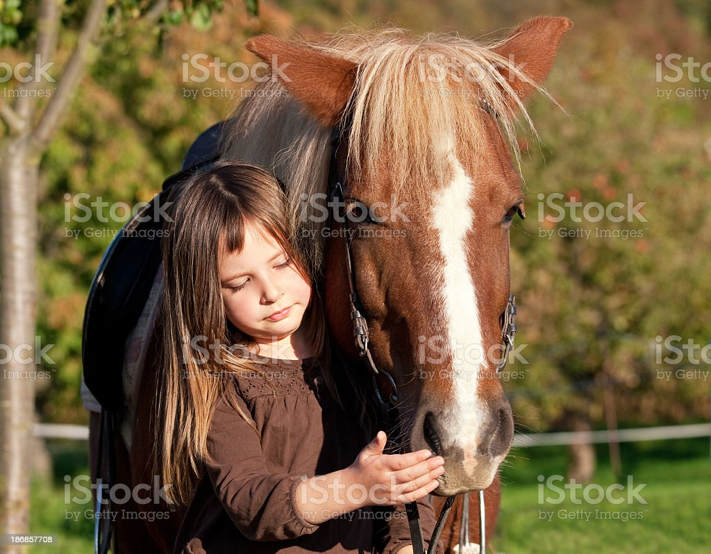 Young girl petting a horse's face royalty-free stock photo