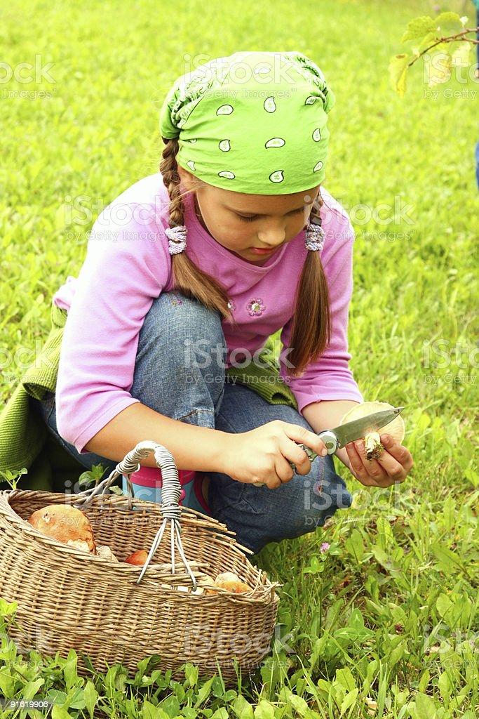 Young girl picking mushrooms stock photo