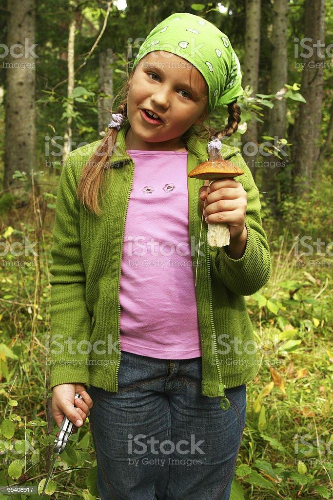Young girl picking mushrooms royalty-free stock photo
