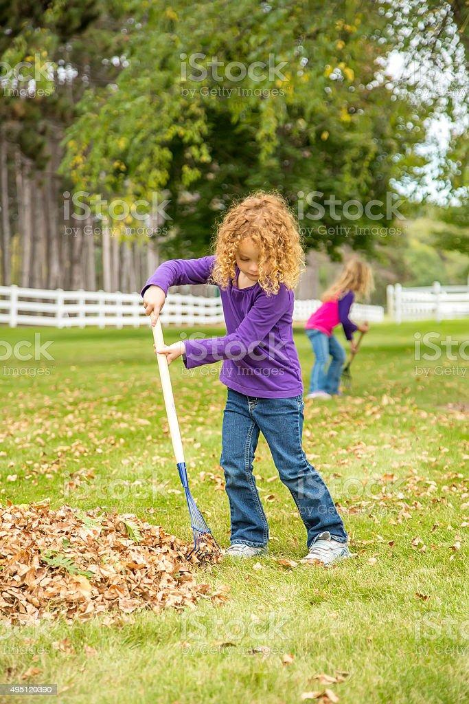 Young Girl Raking Autumn Leaves Into Pile stock photo