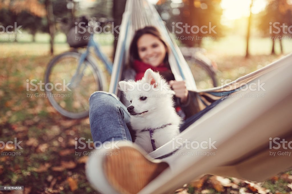 Young girl resting in hammock with little dog stock photo