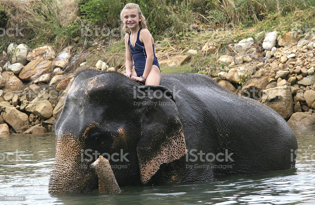 Young girl rides an elephant in water. stock photo