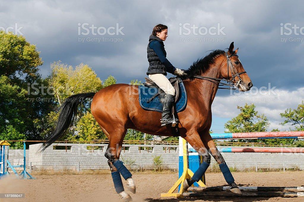 young girl riding a horse stock photo