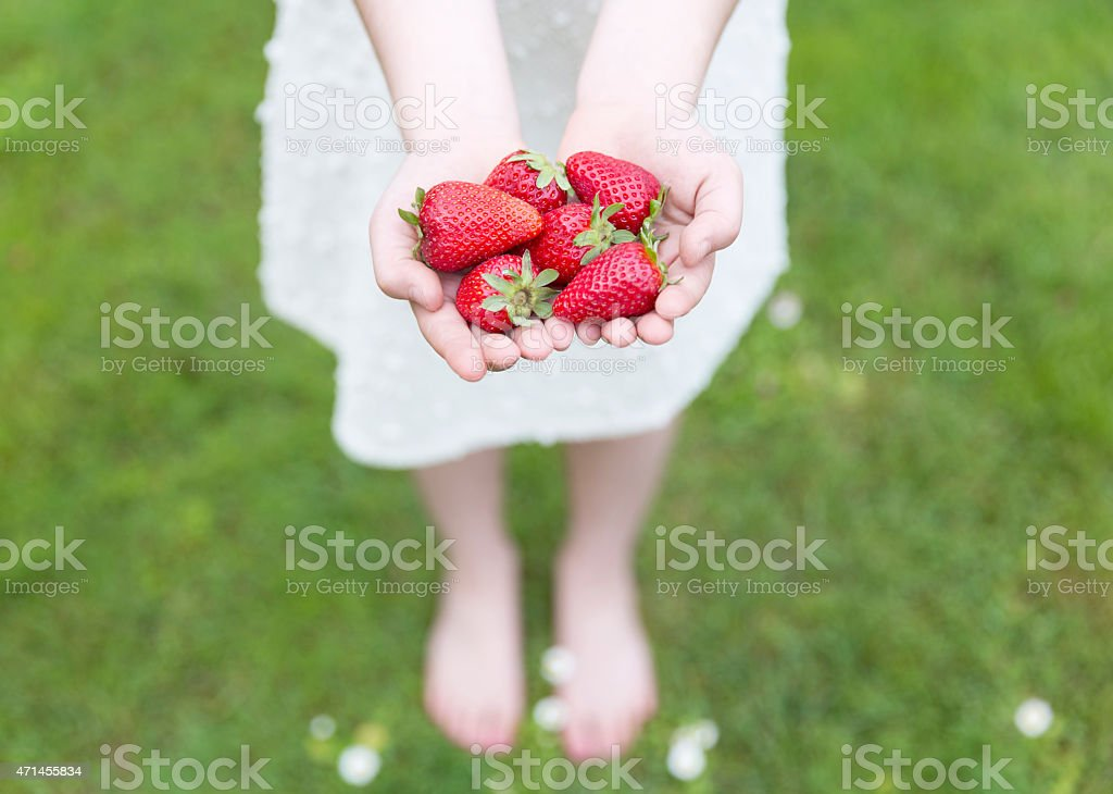 Young girl showing her hands full of Strawberries stock photo