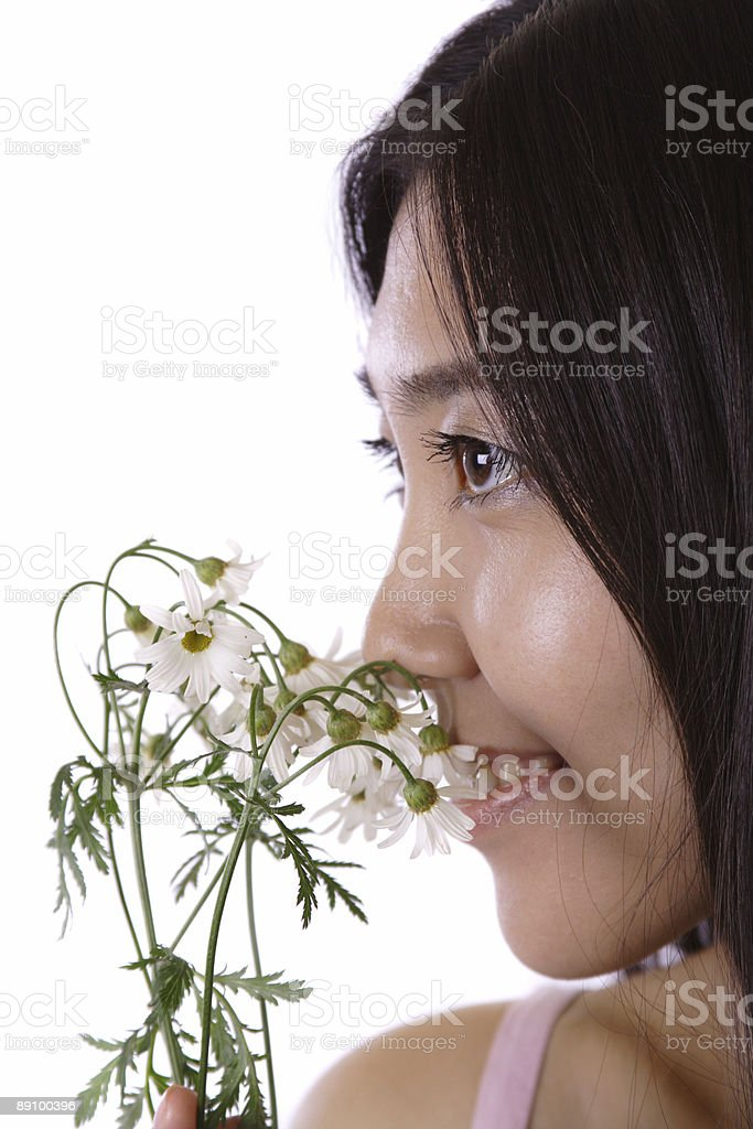 young girl smell camomile royalty-free stock photo