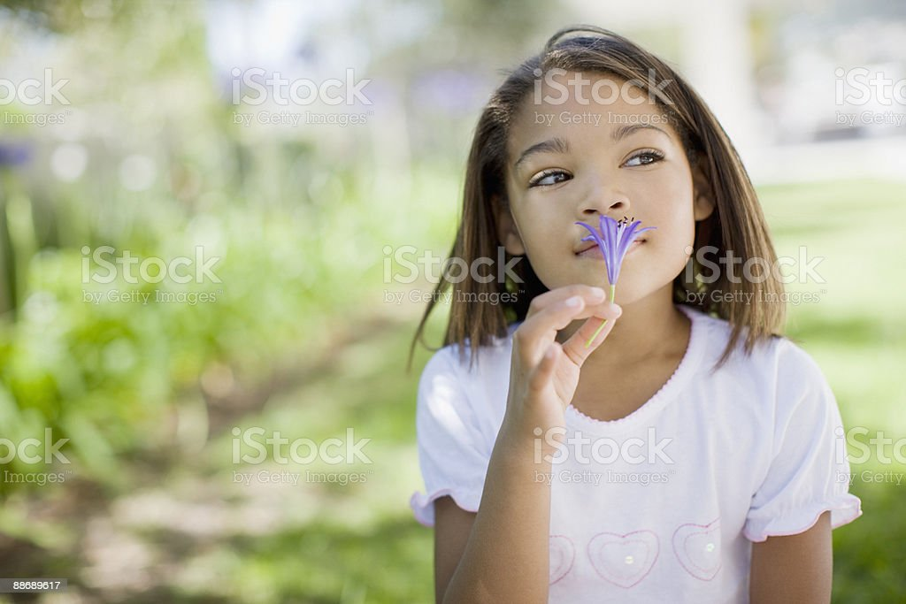 Young girl smelling flower royalty-free stock photo