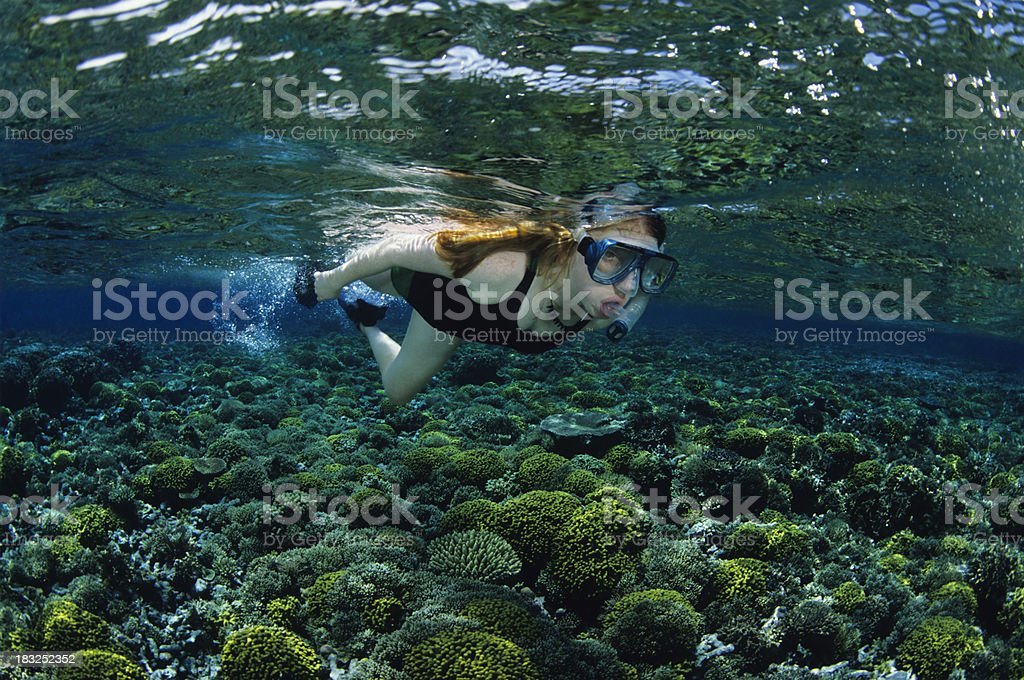 Young Girl Snorkeling stock photo