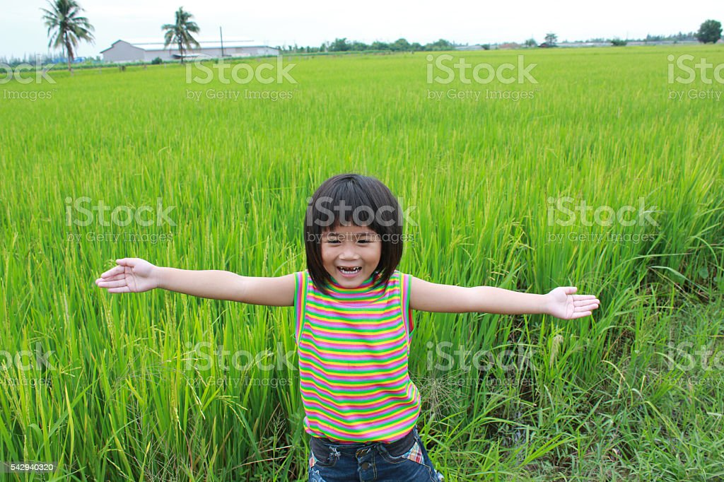 Young girl standing in the rice field Lizenzfreies stock-foto
