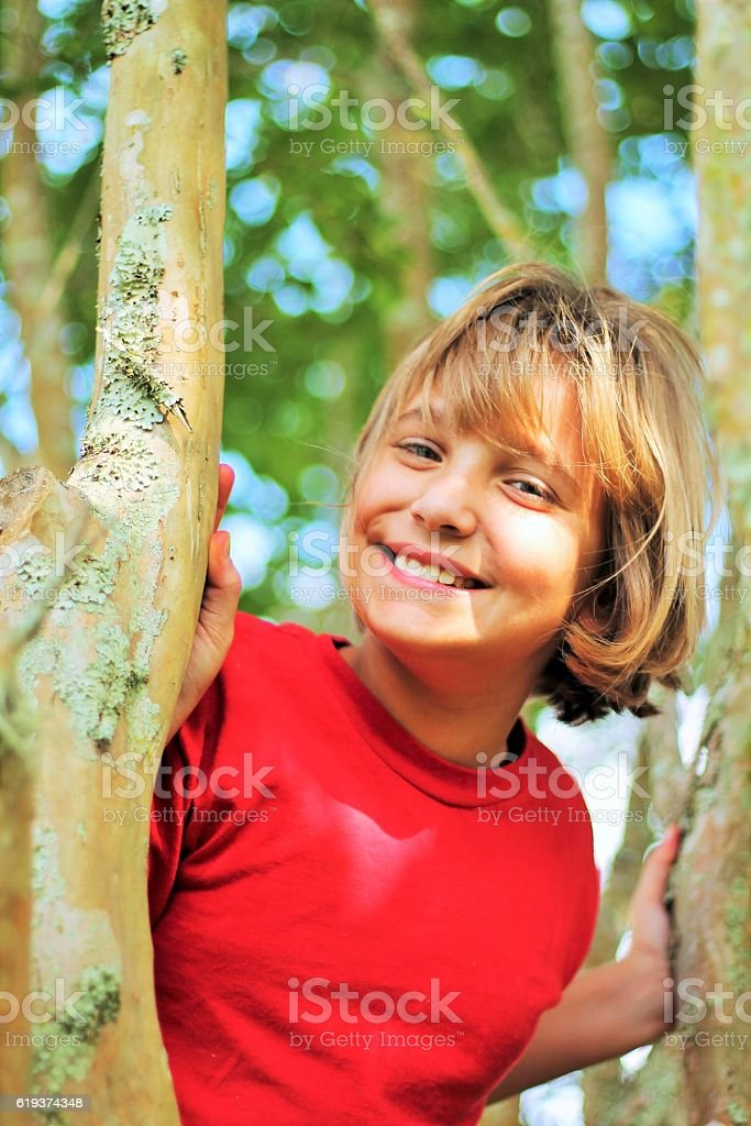 Young Girl Up a Tree stock photo