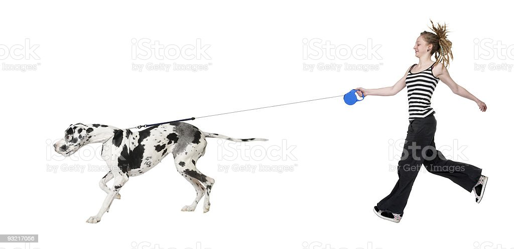Young girl walking her dog (Great dane 4 years) stock photo