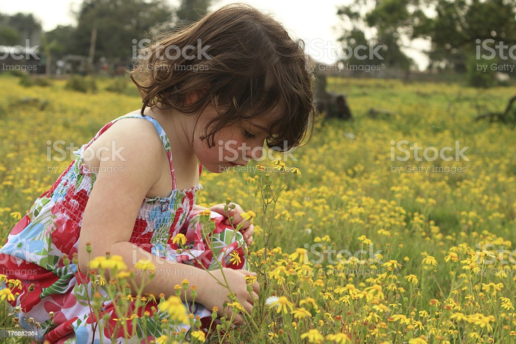 Young girl walking through a meadow royalty-free stock photo