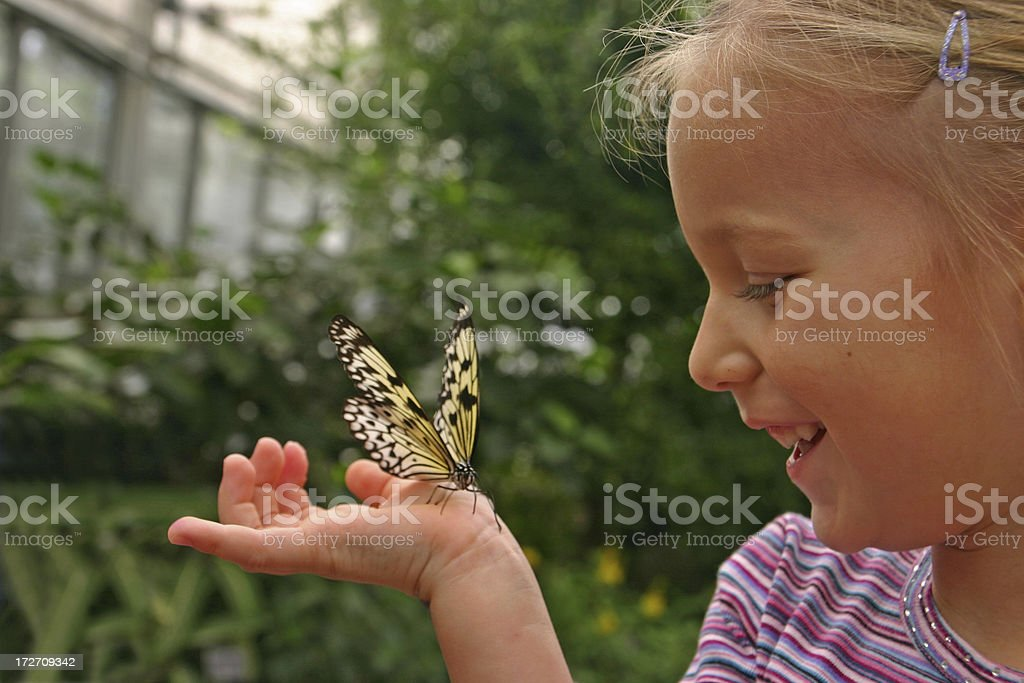 Young girl with butterfly on hand stock photo