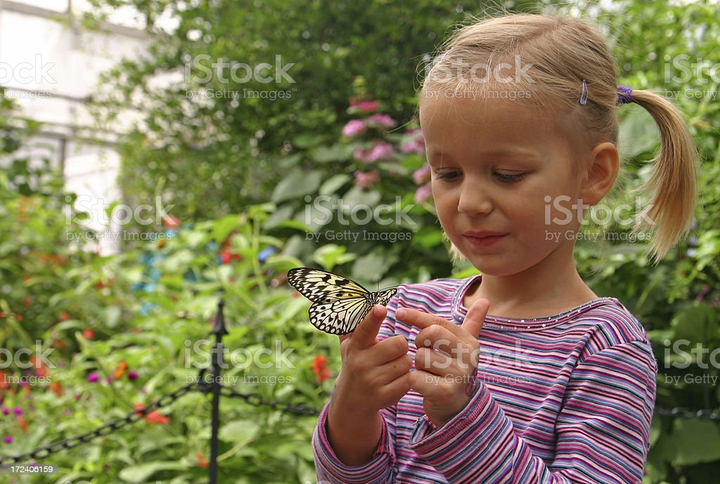 Young girl with butterfly on her hand stock photo