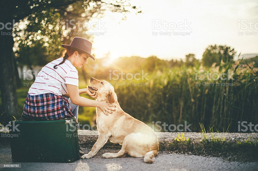 young girl with her dog in the sunset stock photo