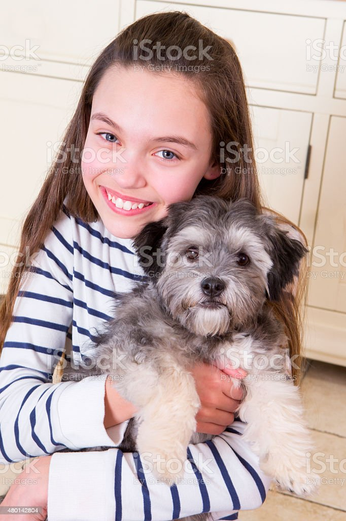 Young girl with Puppy stock photo
