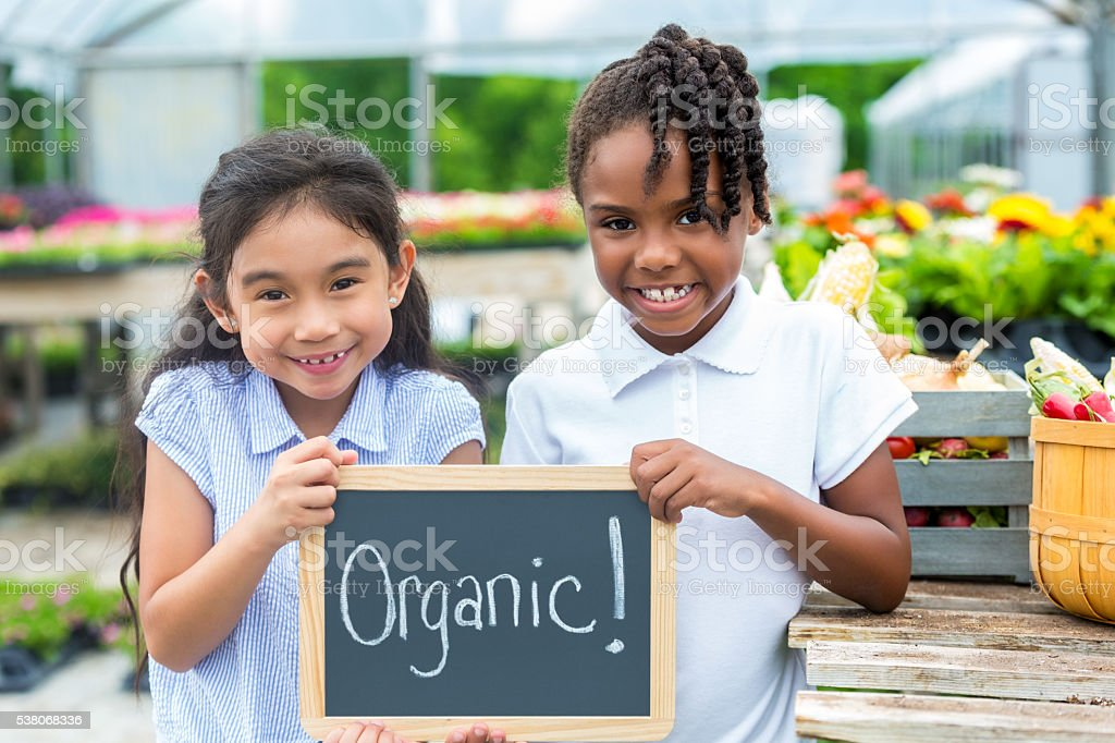Young girls holding organic sign stock photo
