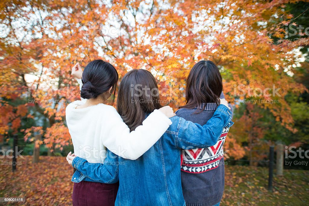 Young girls looking at autumn foliage together with arms around stock photo