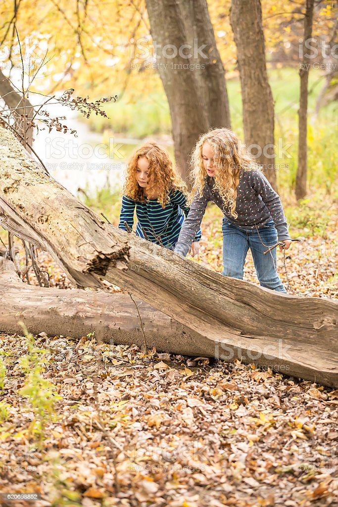 Young Girls Playing in Autumn Woods Near River stock photo