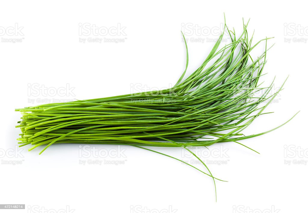Young green onion leaves isolated on white. stock photo